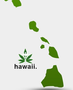 Hawaii Marijuana Laws