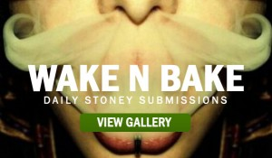 WAKE-N-BAKE-STONERS-PICTURE
