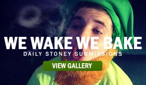WE-WAKE-WE-BAKE-STONER