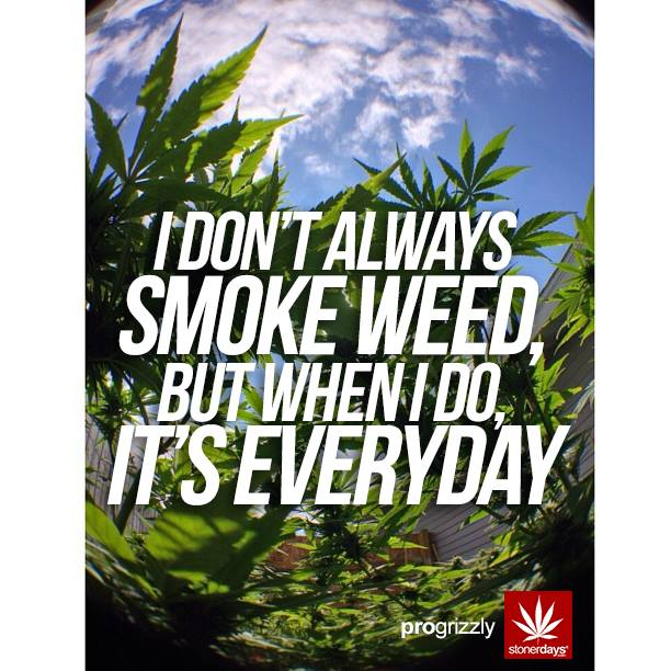 smoke weed everyday with stonerdays