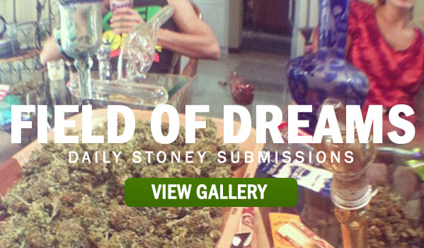 Stoners Field of Dreams