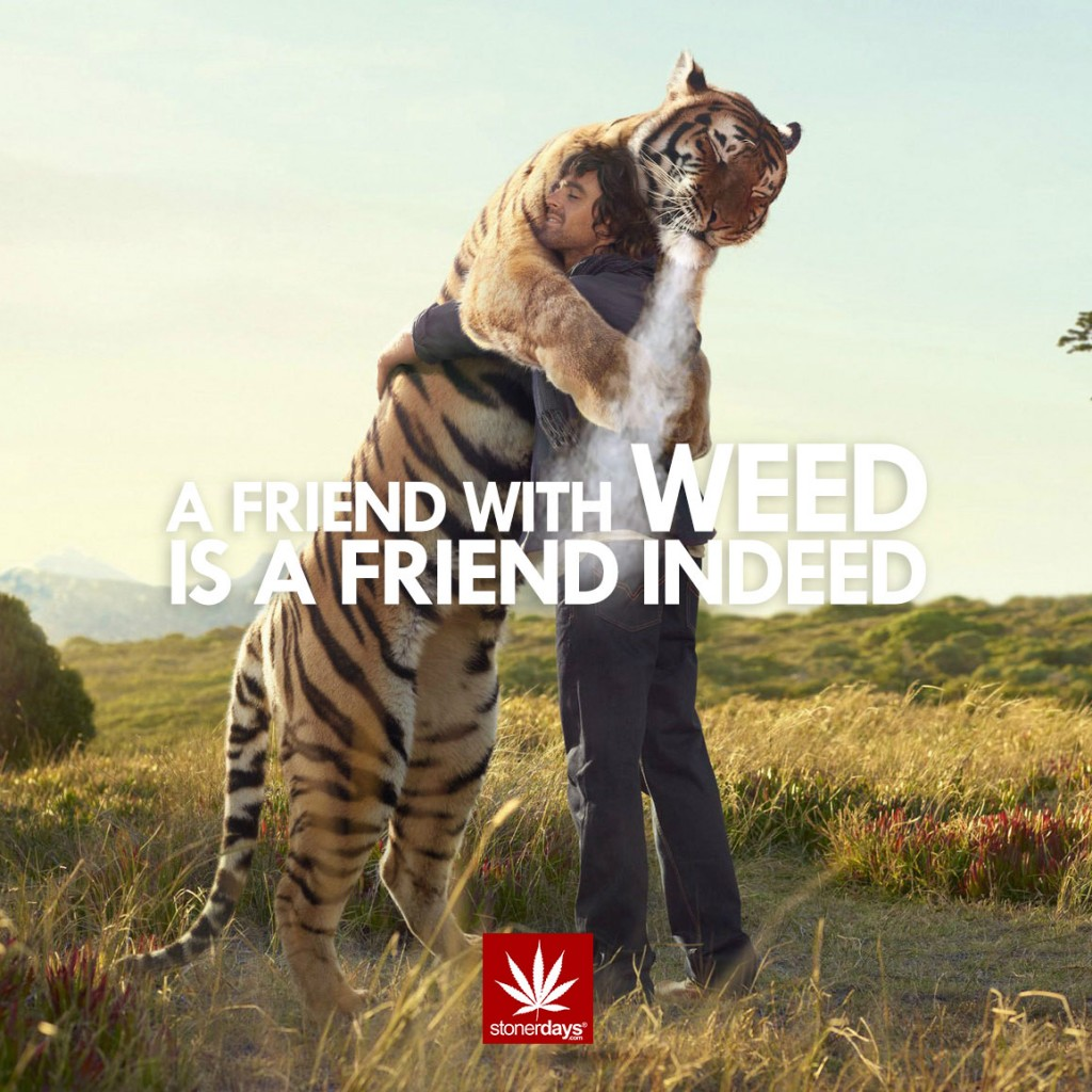 FRIEND-WITH-WEED