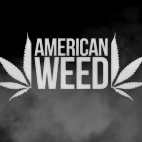 American Weed | The Vaporizer