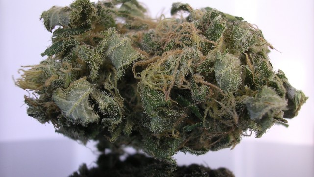 California Grapefruit