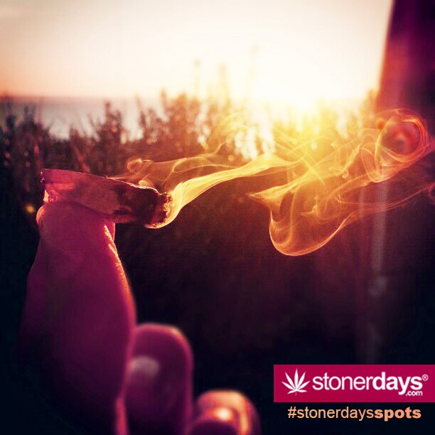 stoners laborday week (25)