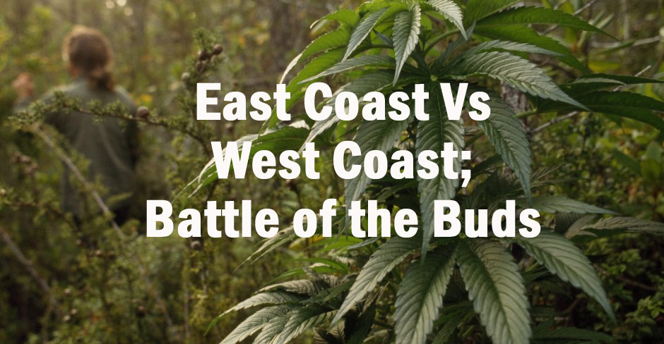 battle-of-the-buds