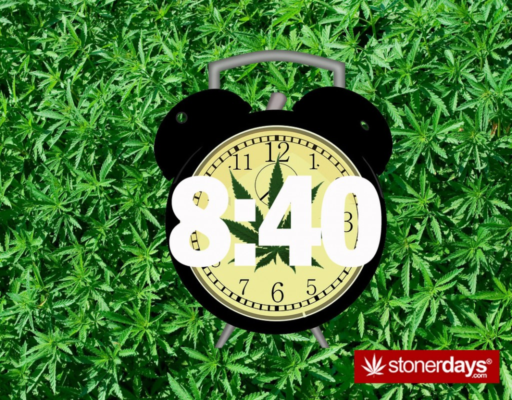 840-STONERDAYS-STONER-TERMS