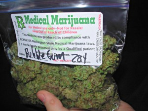 bubble-gum-bud-weed-bubble-gum-medical-marijuana-thcf-fs-001