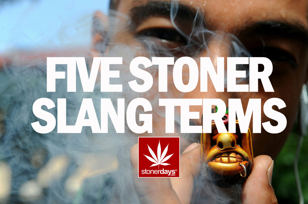 FIVE STONEDAYS STONER TERMS