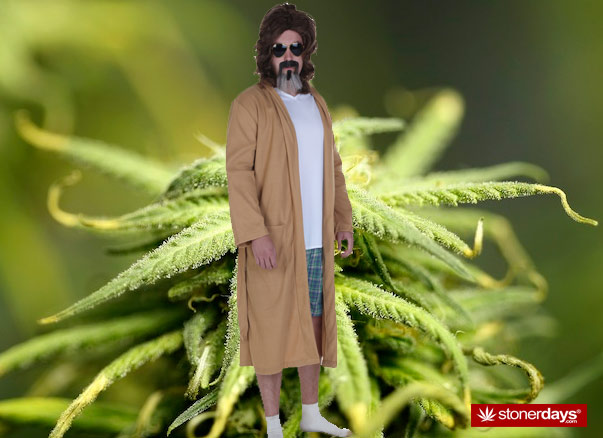 the dude stonerdays
