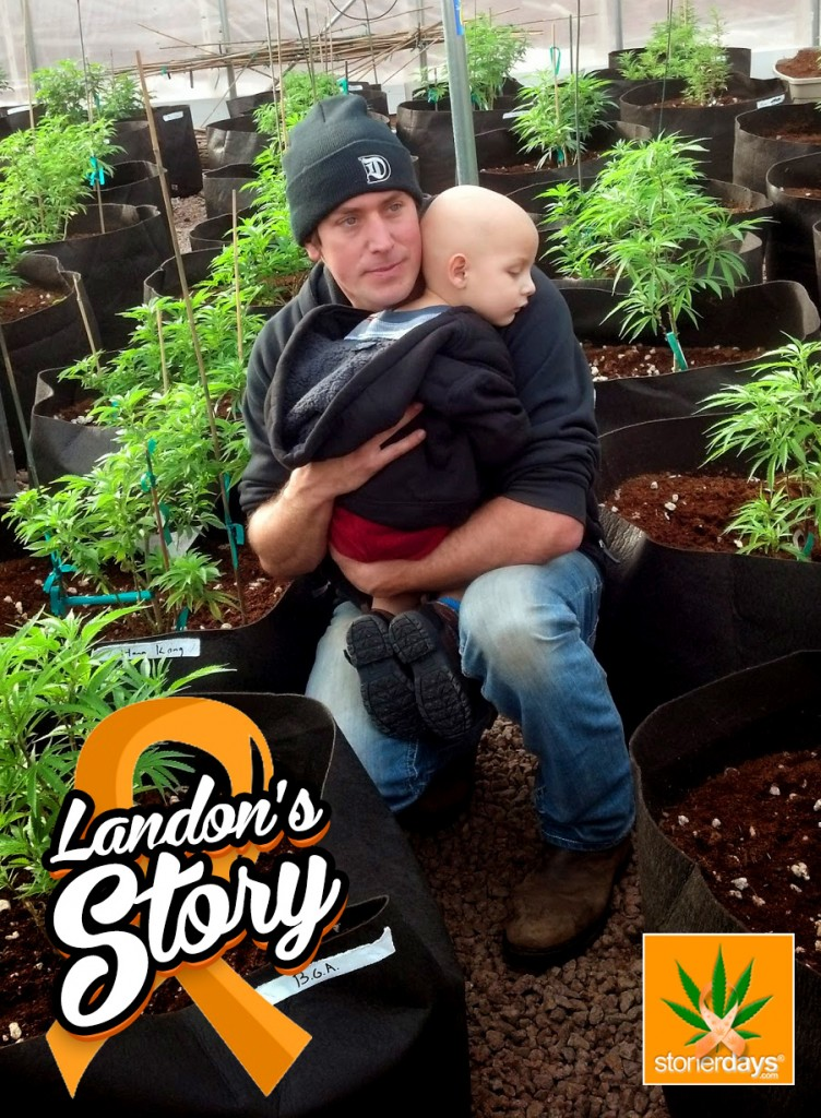 Landons Riddles cannabis cure