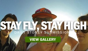 STAY-FLY-STAY-HIGH-STONERDA