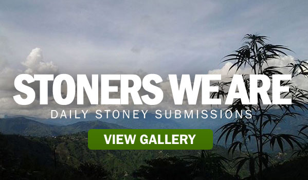 STONERS-WE-ARE