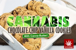CHOCOLATE-CHIP-VANILLA
