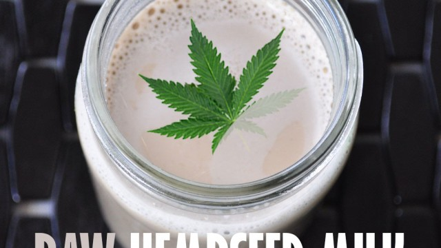 Stoner Cookbook; Raw Hempseed Milk