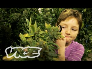 Stoned Kids – Vice
