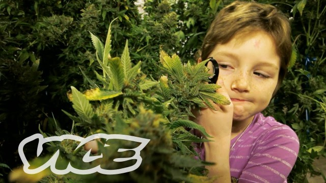 America's Stoned Kids and moms