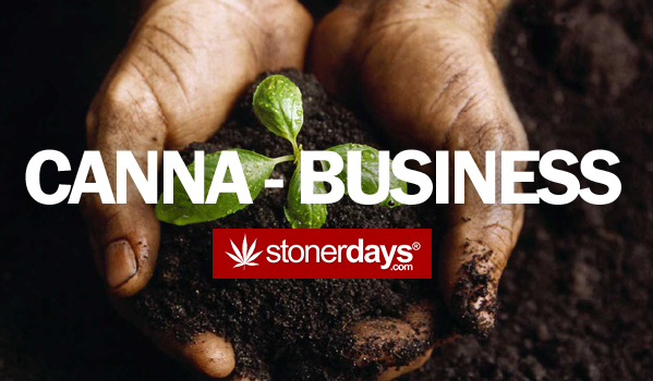 Break Into The Cannabis Business