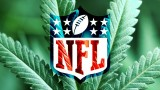 Stoner Blog; Marijuana In The NFL