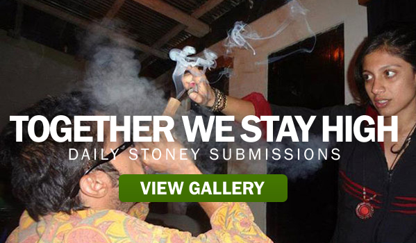 Together We Stay High – Stoney Submissions