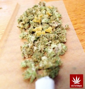 hot topic marijuana Marijuana once again will be an issue at the legislature, with a number of bills anticipated, from possibly decriminalizing the possession of small amounts of pot to banning medical marijuana.