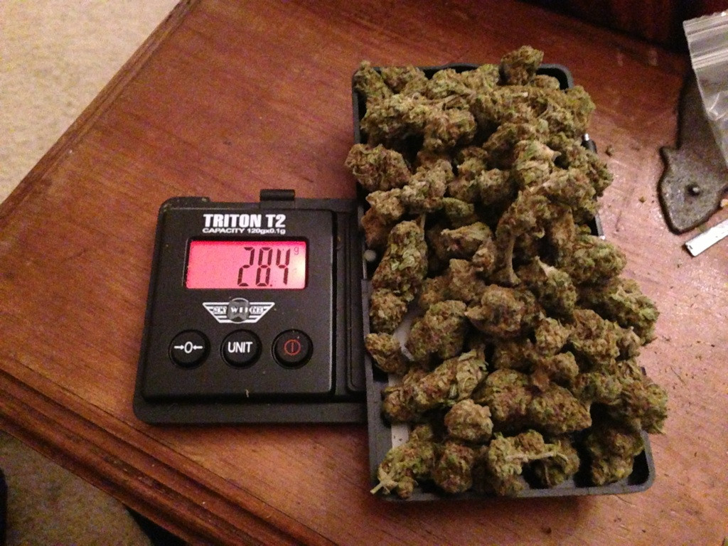 2 Ounces Of Weed But weed does grow on trees