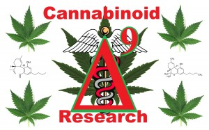 Real Facts about the Cannabinoids in Cannabis