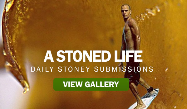 A Stoned Life