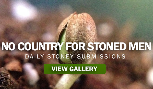 No Country For Stoned Men