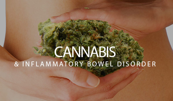 Cannabis And Inflammatory Bowel Disorder
