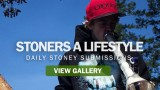 Stoners A Lifestyle