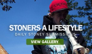 stoners-a-lifestyle