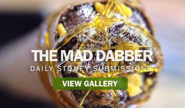 The Mad Dabber