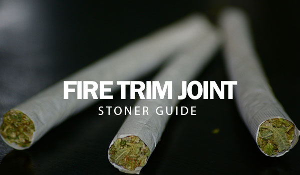 Fire Trim Joint