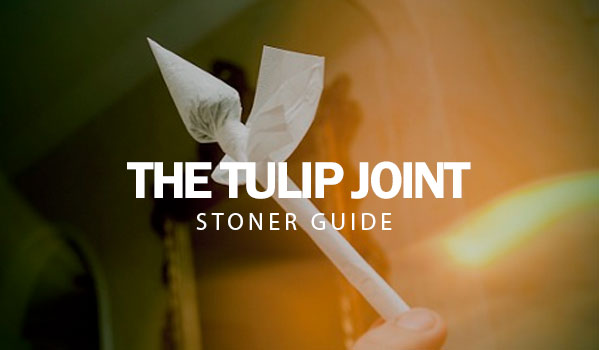 The Tulip Joint