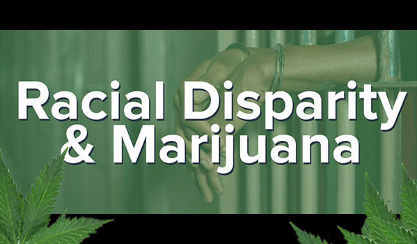 Racial Disparity & Marijuana