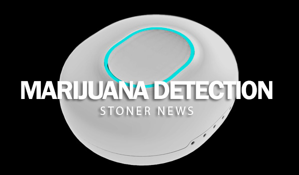 Marijuana Detection Device