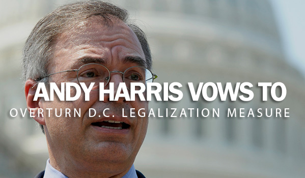 Andy Harris Vows to Overturn D.C. Legalization Measure
