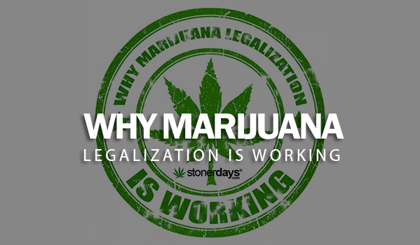 Why Marijuana Legalization is Working