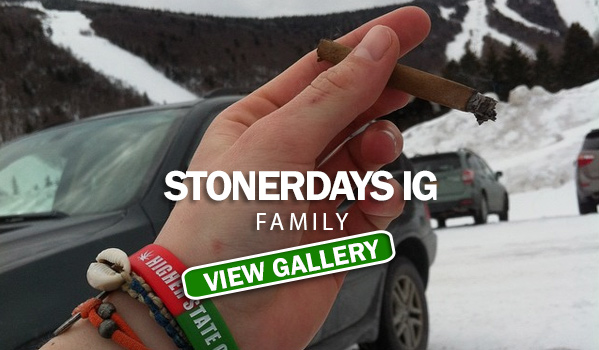 StonerDays IG Family #10