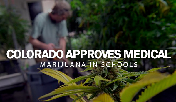 Colorado Approves Medical Marijuana in School