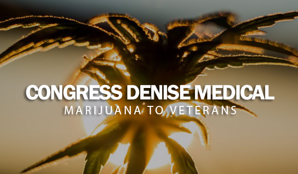Congress Denise Medical Marijuana to Veterans