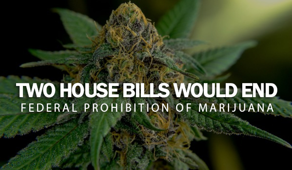 Two House Bills Would End Federal Prohibition Of Marijuana