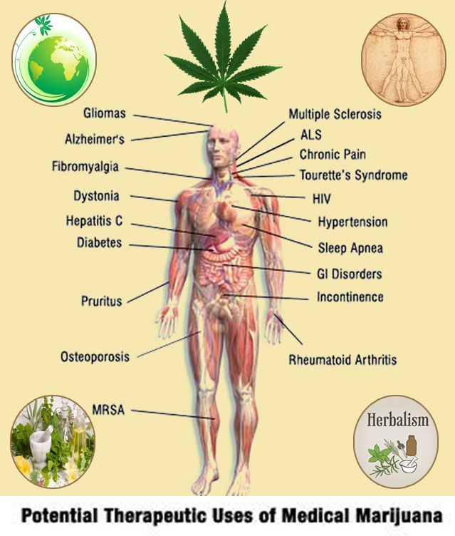 an analysis of the medical value of marijuana in the field of medicine Analysis interpretation belief that marijuana has no medical value and hence internal medicine, states with medical marijuana laws.