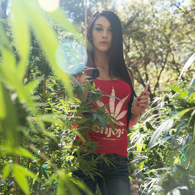 marijuana-clothing-stonerdays (3)