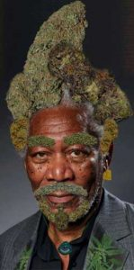 stoner-morgan-freeman