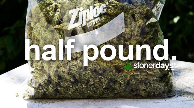 Half Pound Stonerdays Dictionary