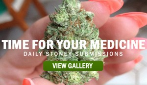TIME-FOR-YOUR-STONER