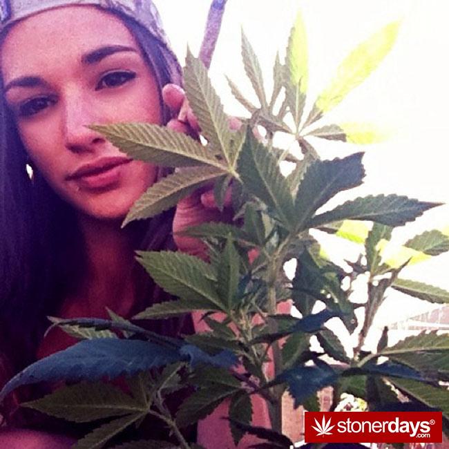 420-babe-stoned-blazed-Chelsoy--(33)