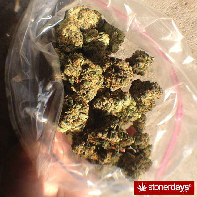420-babe-stoned-blazed-bongbint-(44)
